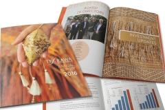 Te Arawa Group Holdings